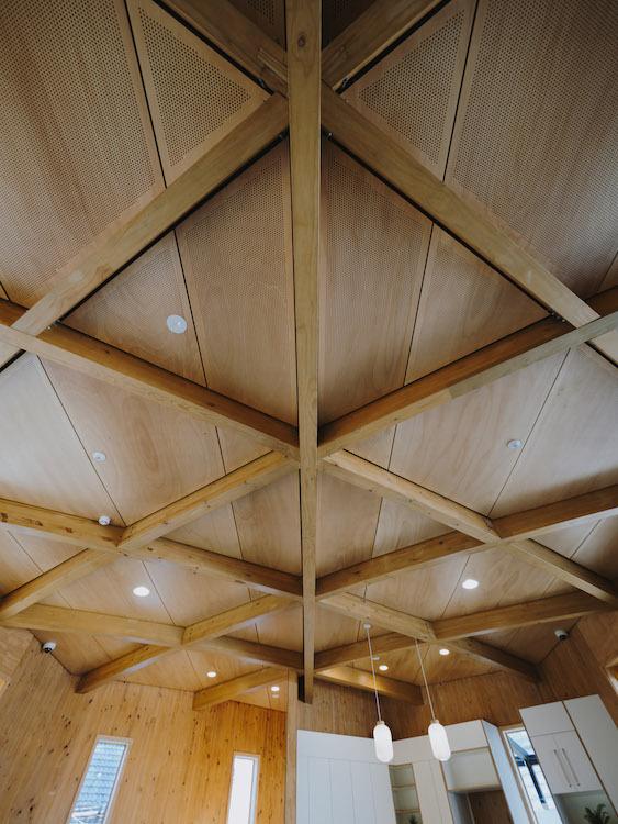 Klein Northbridge Pavilion Ceiling